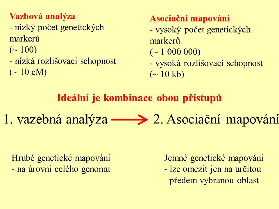 Vazbová analýza - nízký počet genetických markerů (~ 100) - nízká rozlišovací schopnost (~ 10 cM) Asociační mapování - vysoký počet genetických marker