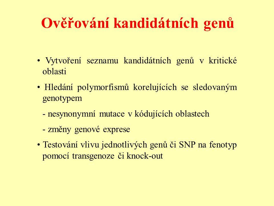 Ověřování kandidátních genů Vytvoření seznamu kandidátních genů v kritické oblasti Hledání polymorfismů korelujících se sledovaným genotypem - nesynon