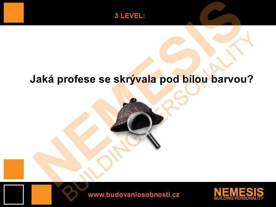 www.budovaniosobnosti.cz 3 LEVEL: Jaká profese se skrývala pod bílou barvou