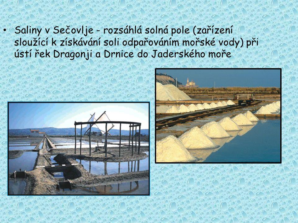 Saliny v Sečovlje - rozsáhlá solná pole (zařízení sloužící k získávání soli odpařováním mořské vody) při ústí řek Dragonji a Drnice do Jaderského moře