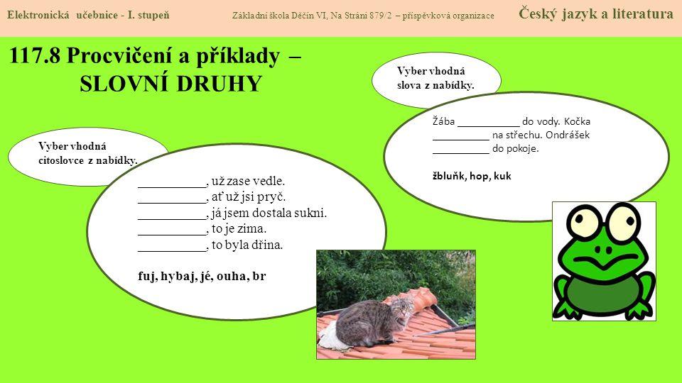 117.8 Procvičení a příklady – SLOVNÍ DRUHY Elektronická učebnice - I.