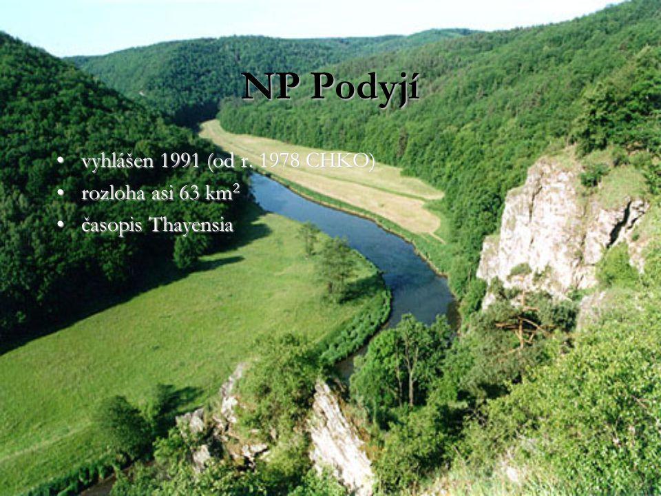 NP Podyjí vyhlášen 1991 (od r. 1978 CHKO)vyhlášen 1991 (od r. 1978 CHKO) rozloha asi 63 km 2rozloha asi 63 km 2 časopis Thayensiačasopis Thayensia