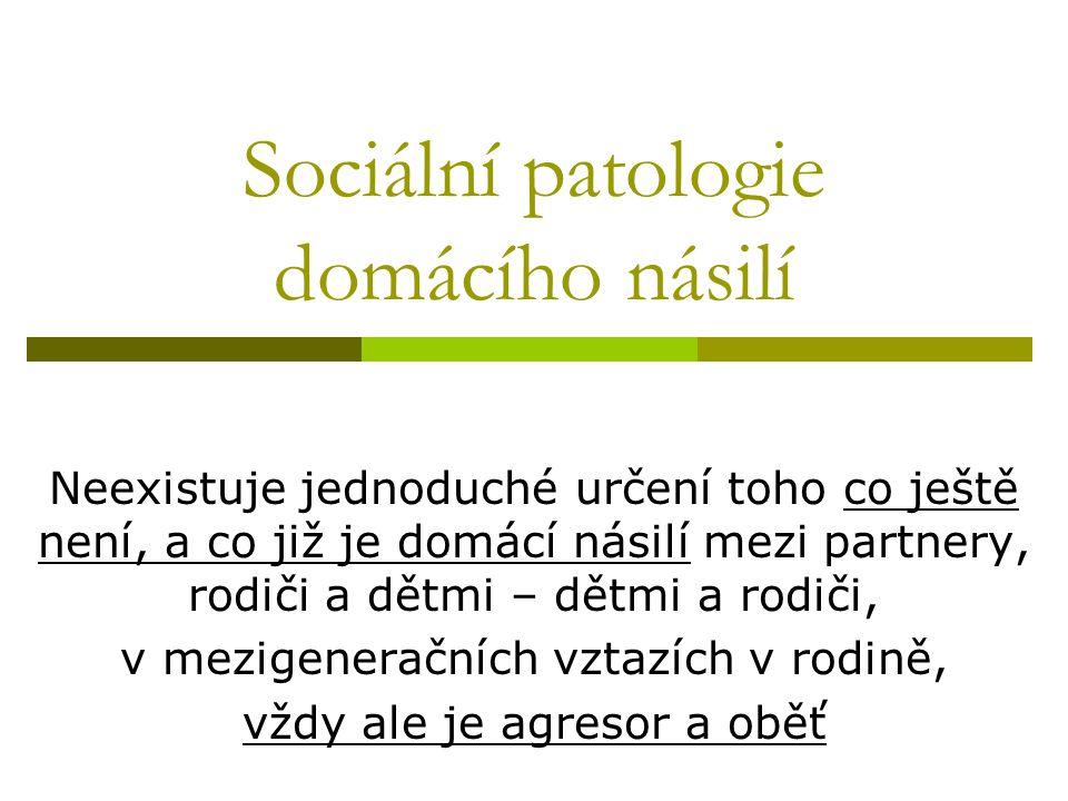 Zákon o sociálních službách č.108/2006 s platností od 1.1.2007  Změna zákona č.