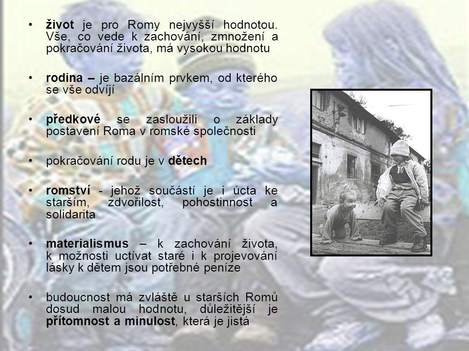rodina pro Romy znamenala téměř vše,neboť uspokojovala základní potřeby jejích členů - byla zdrojem obživy, - měla funkci vzdělávací - a funkci ochranou.
