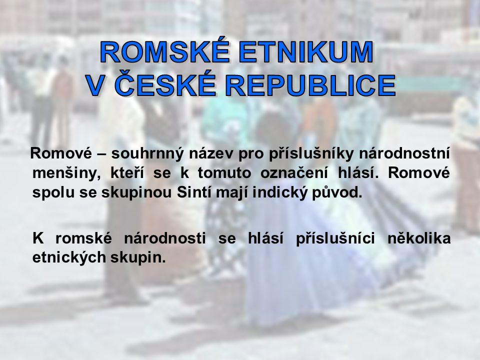Čeští Romové - etnikum, které žilo do druhé světové války na území Čech Moravští Romové - etnikum, které žilo do druhé světové války na území Moravy Maďarští Romové - etnikum, které žilo do druhé světové války na území Maďarska a na území jižního Slovenska v oblasti obývané maďarskou národnostní menšinou Slovenští Romové - etnikum, které žilo do roku 1945 na Slovensku Olašští Romové - etnikum, které kočovalo ve střední Evropě až do roku 1959, kdy bylo násilně sedenterizováno Sintí - etnikum žijící rozptýleně v západní Evropě.