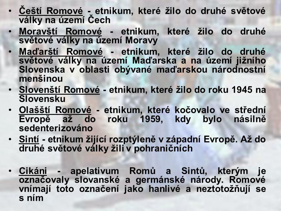 počet Romů na území České republiky je odhadován na 300000 zastoupení jednotlivých etnik: