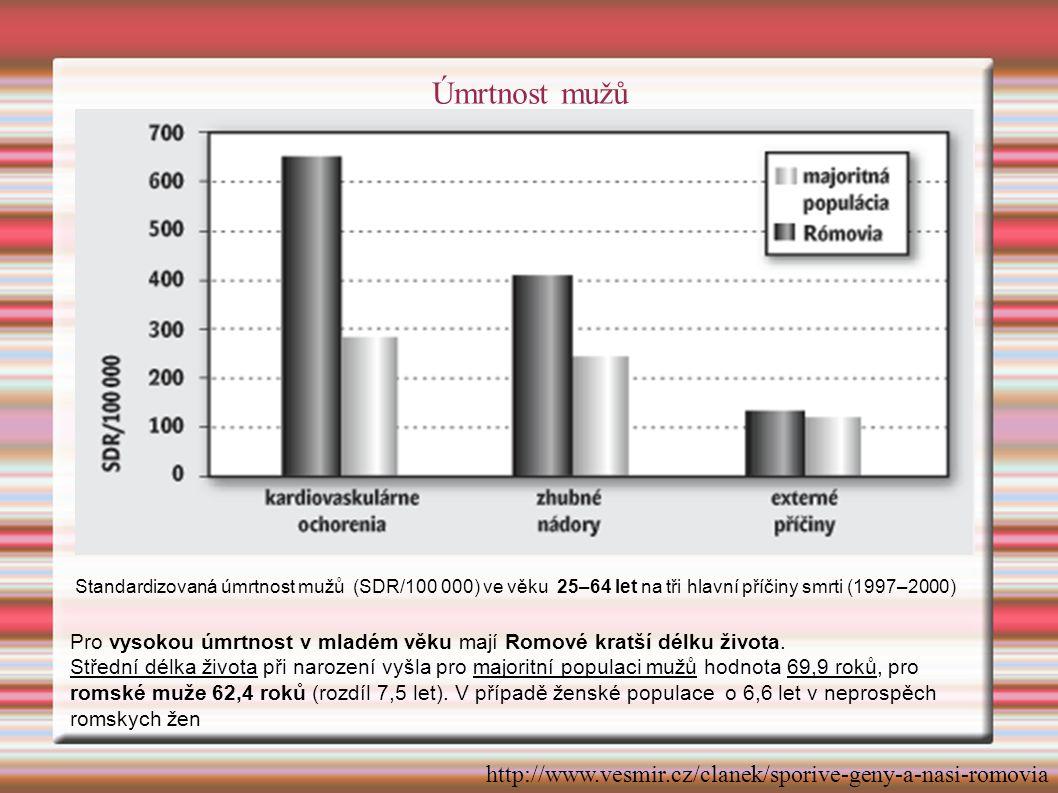 Standardizovaná úmrtnost mužů (SDR/100 000) ve věku 25–64 let na tři hlavní příčiny smrti (1997–2000) Pro vysokou úmrtnost v mladém věku mají Romové kratší délku života.