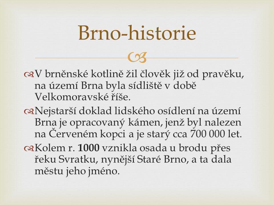   V brněnské kotlině žil člověk již od pravěku, na území Brna byla sídliště v době Velkomoravské říše.