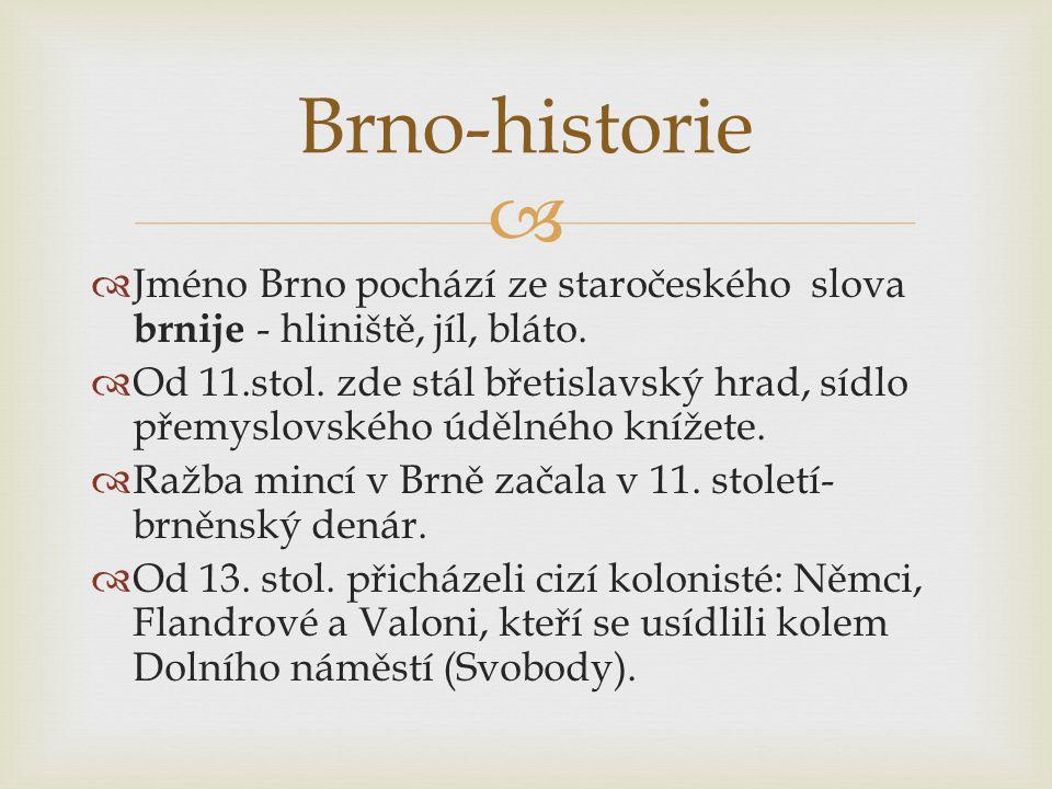  Jméno Brno pochází ze staročeského slova brnije - hliniště, jíl, bláto.  Od 11.stol. zde stál břetislavský hrad, sídlo přemyslovského údělného kn