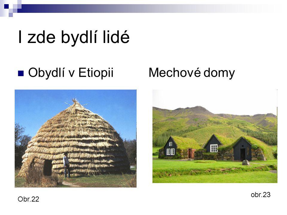 I zde bydlí lidé Obydlí v Etiopii Mechové domy Obr.22 obr.23