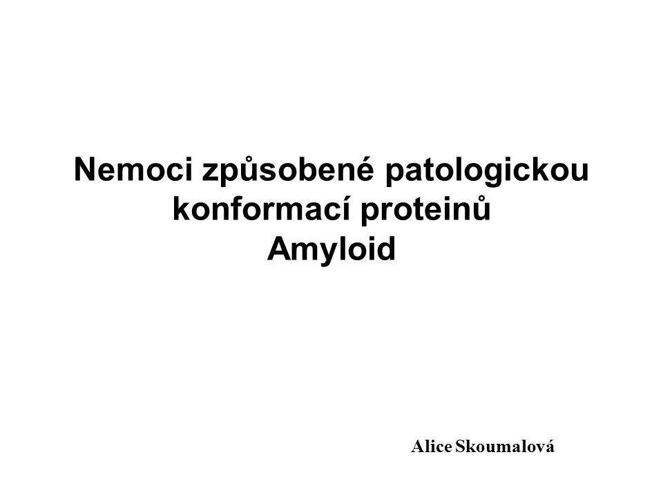 Nemoci způsobené patologickou konformací proteinů Amyloid Alice Skoumalová