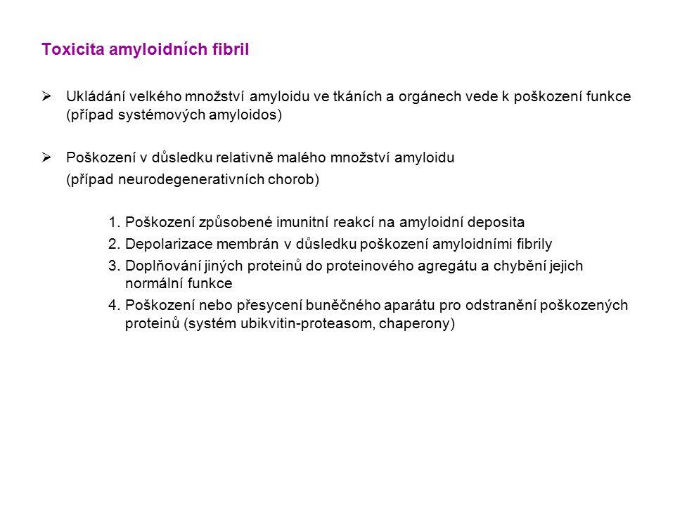 Toxicita amyloidních fibril  Ukládání velkého množství amyloidu ve tkáních a orgánech vede k poškození funkce (případ systémových amyloidos)  Poškození v důsledku relativně malého množství amyloidu (případ neurodegenerativních chorob) 1.