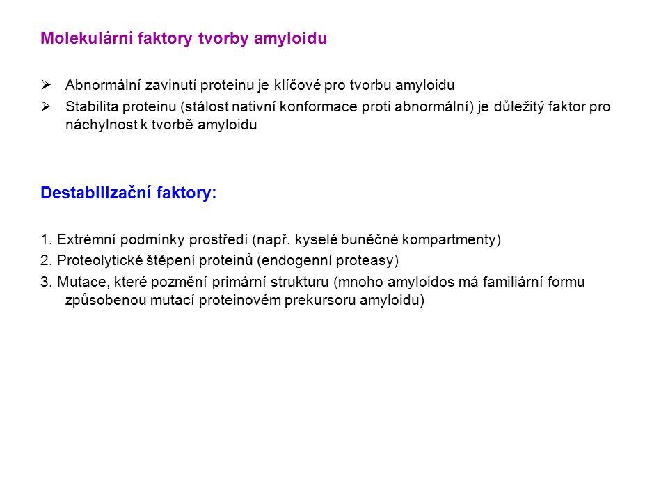 Molekulární faktory tvorby amyloidu  Abnormální zavinutí proteinu je klíčové pro tvorbu amyloidu  Stabilita proteinu (stálost nativní konformace proti abnormální) je důležitý faktor pro náchylnost k tvorbě amyloidu Destabilizační faktory: 1.