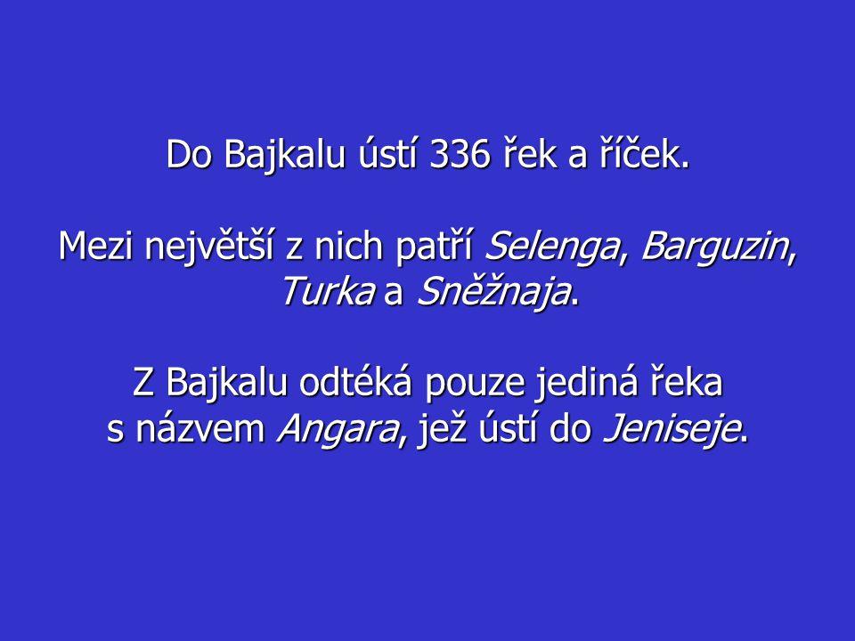 Do Bajkalu ústí 336 řek a říček. Mezi největší z nich patří Selenga, Barguzin, Turka a Sněžnaja. Z Bajkalu odtéká pouze jediná řeka s názvem Angara, j