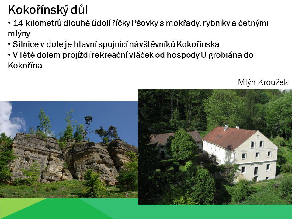 Kokořínský důl 14 kilometrů dlouhé údolí říčky Pšovky s mokřady, rybníky a četnými mlýny. Silnice v dole je hlavní spojnicí návštěvníků Kokořínska. V