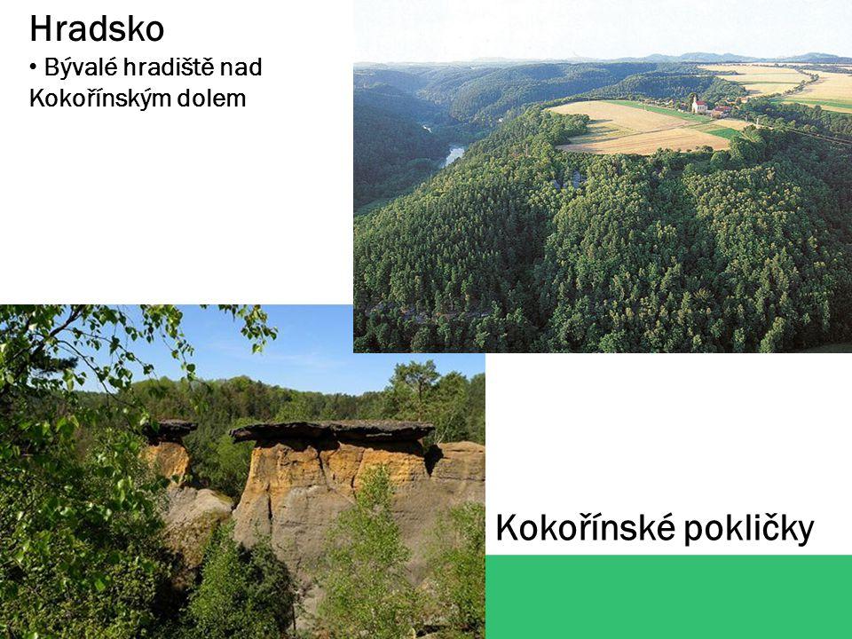 Hradsko Bývalé hradiště nad Kokořínským dolem Kokořínské pokličky