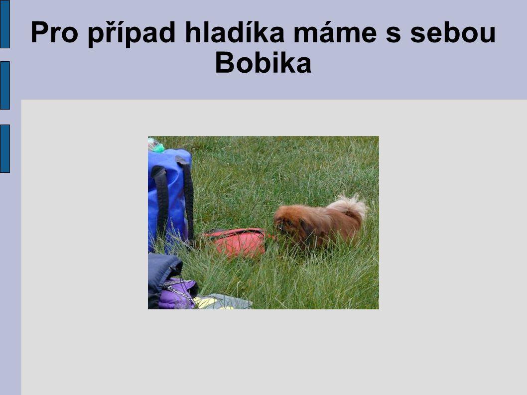 Pro případ hladíka máme s sebou Bobika