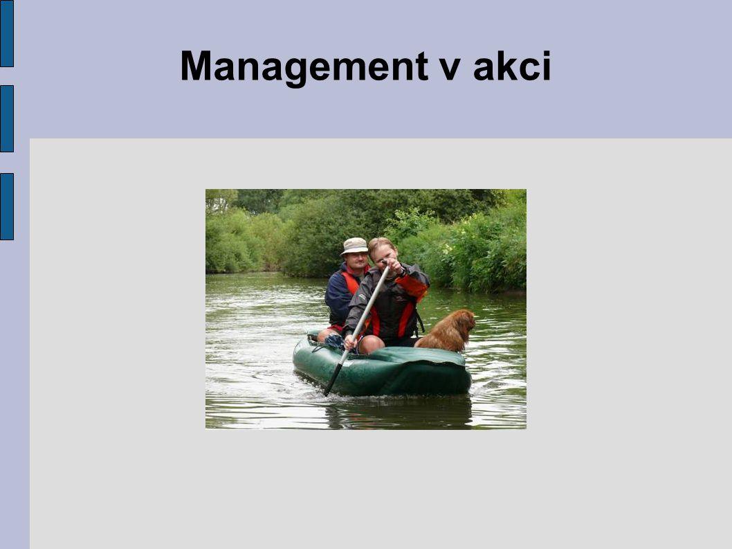 Management v akci