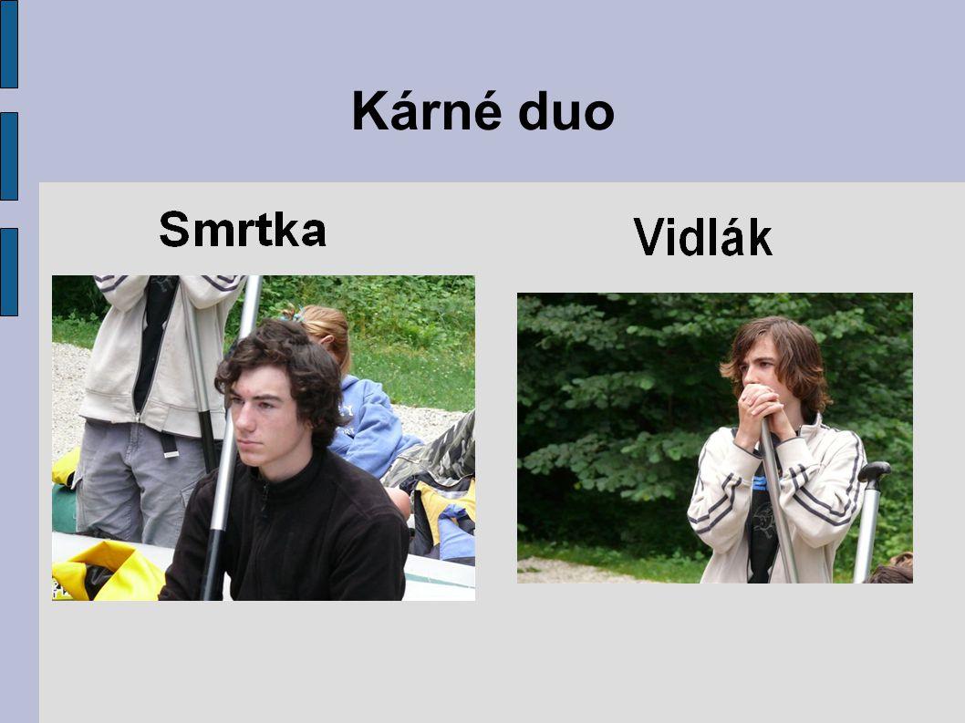 Kárné duo