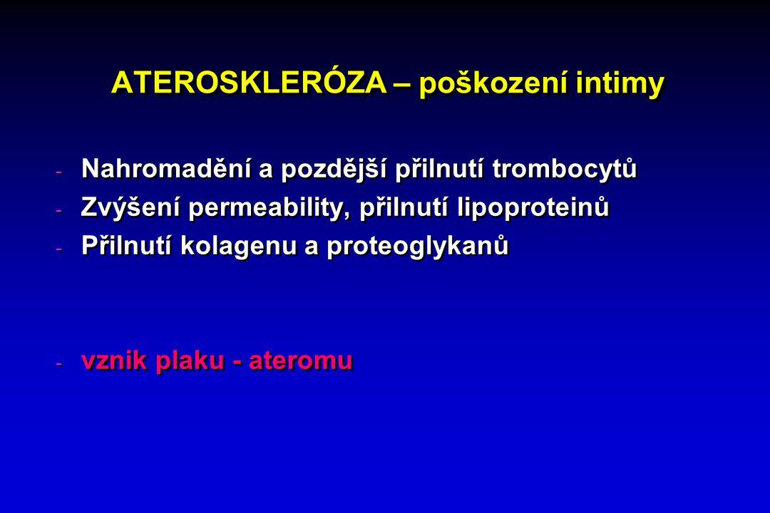 ATEROSKLERÓZA – poškození intimy - Nahromadění a pozdější přilnutí trombocytů - Zvýšení permeability, přilnutí lipoproteinů - Přilnutí kolagenu a proteoglykanů - vznik plaku - ateromu - Nahromadění a pozdější přilnutí trombocytů - Zvýšení permeability, přilnutí lipoproteinů - Přilnutí kolagenu a proteoglykanů - vznik plaku - ateromu