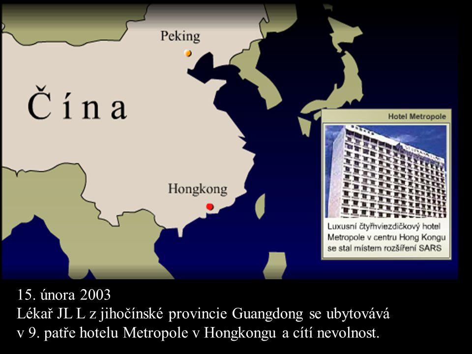 15. února 2003 Lékař JL L z jihočínské provincie Guangdong se ubytovává v 9. patře hotelu Metropole v Hongkongu a cítí nevolnost.