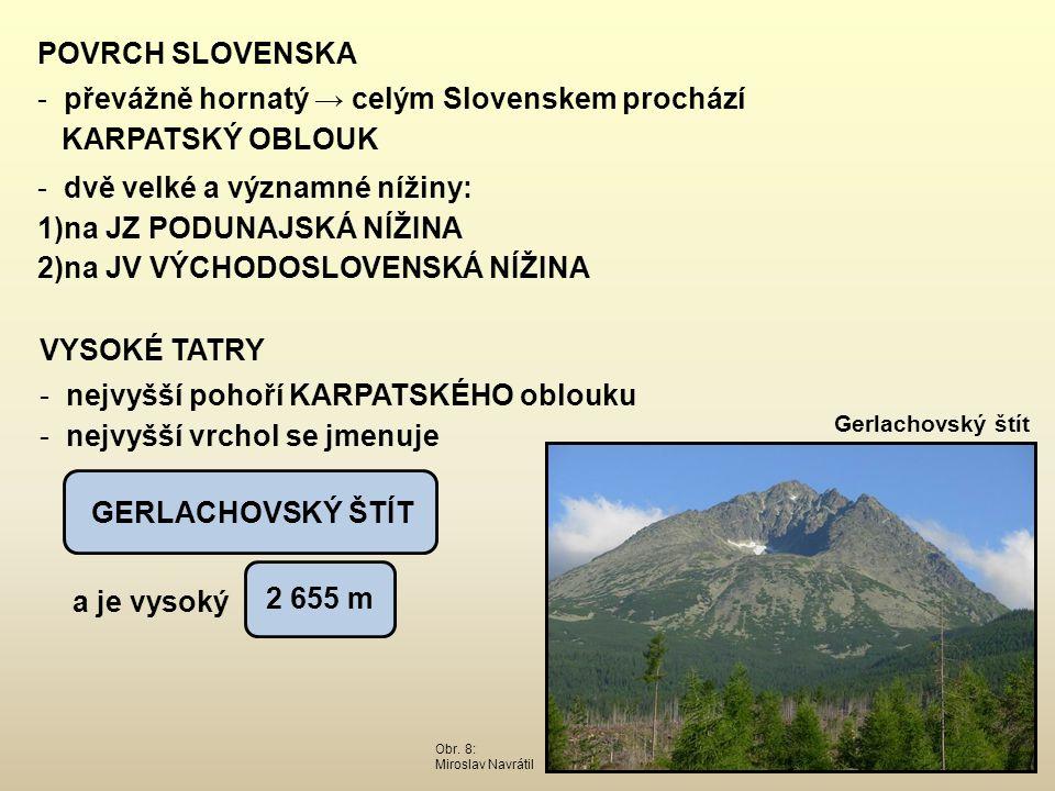 POVRCH SLOVENSKA - převážně hornatý → celým Slovenskem prochází KARPATSKÝ OBLOUK - dvě velké a významné nížiny: 1)na JZ PODUNAJSKÁ NÍŽINA 2)na JV VÝCH