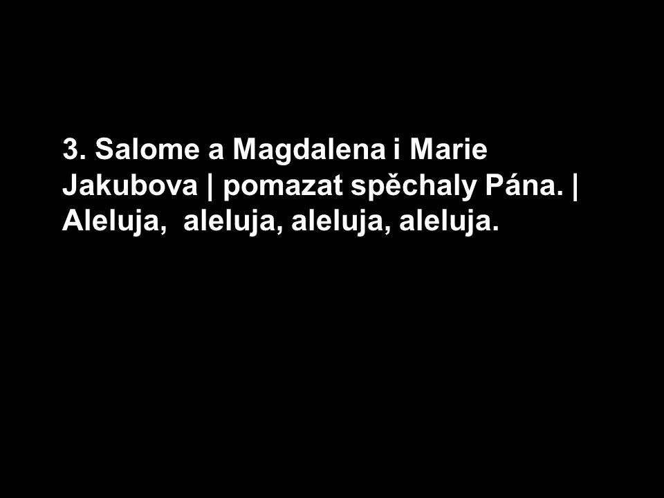 3. Salome a Magdalena i Marie Jakubova | pomazat spěchaly Pána.