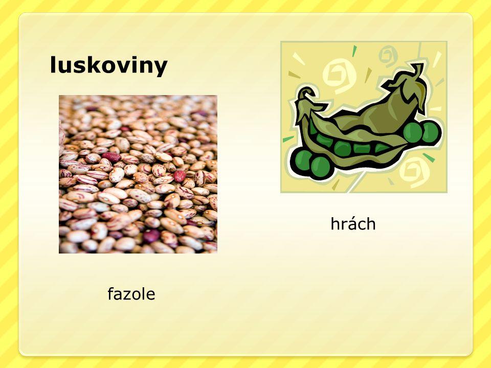 luskoviny fazole hrách