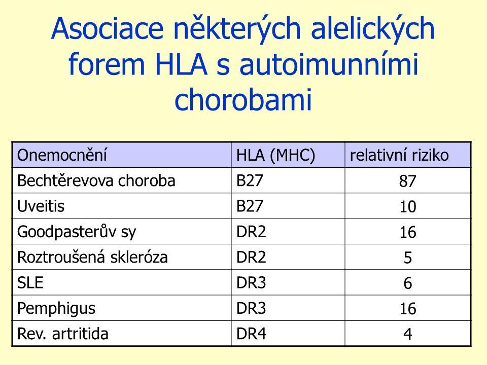 Asociace některých alelických forem HLA s autoimunními chorobami OnemocněníHLA (MHC)relativní riziko Bechtěrevova chorobaB27 87 UveitisB27 10 Goodpasterův syDR2 16 Roztroušená sklerózaDR2 5 SLEDR3 6 PemphigusDR3 16 Rev.