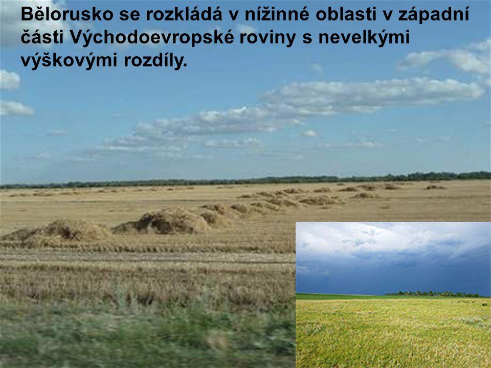 Bělorusko se rozkládá v nížinné oblasti v západní části Východoevropské roviny s nevelkými výškovými rozdíly.