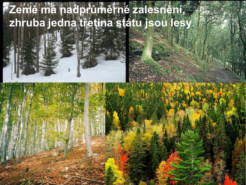 Země má nadprůměrné zalesnění, zhruba jedna třetina státu jsou lesy.