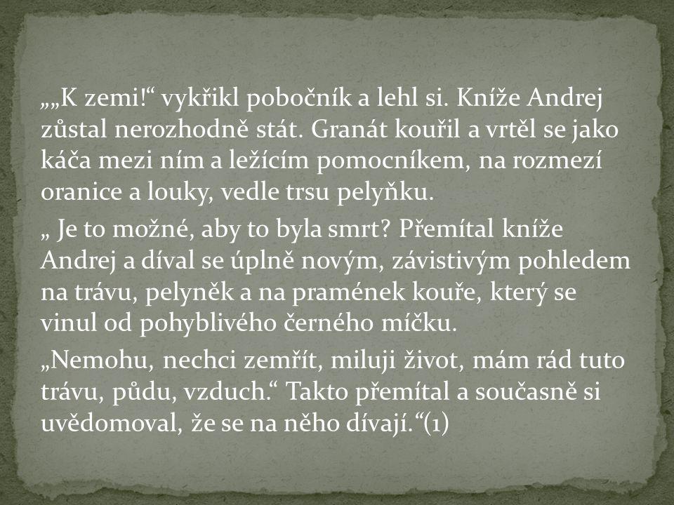 """""""""""K zemi! vykřikl pobočník a lehl si. Kníže Andrej zůstal nerozhodně stát."""