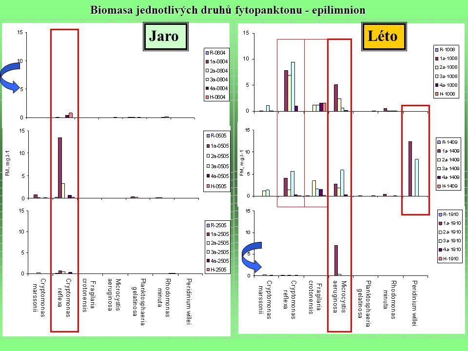 JaroLéto Biomasa jednotlivých druhů fytopanktonu - epilimnion