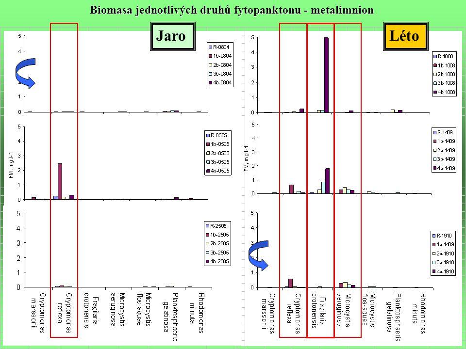 JaroLéto Biomasa jednotlivých druhů fytopanktonu - metalimnion