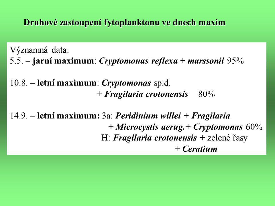 Druhové zastoupení fytoplanktonu ve dnech maxim Významná data: 5.5.