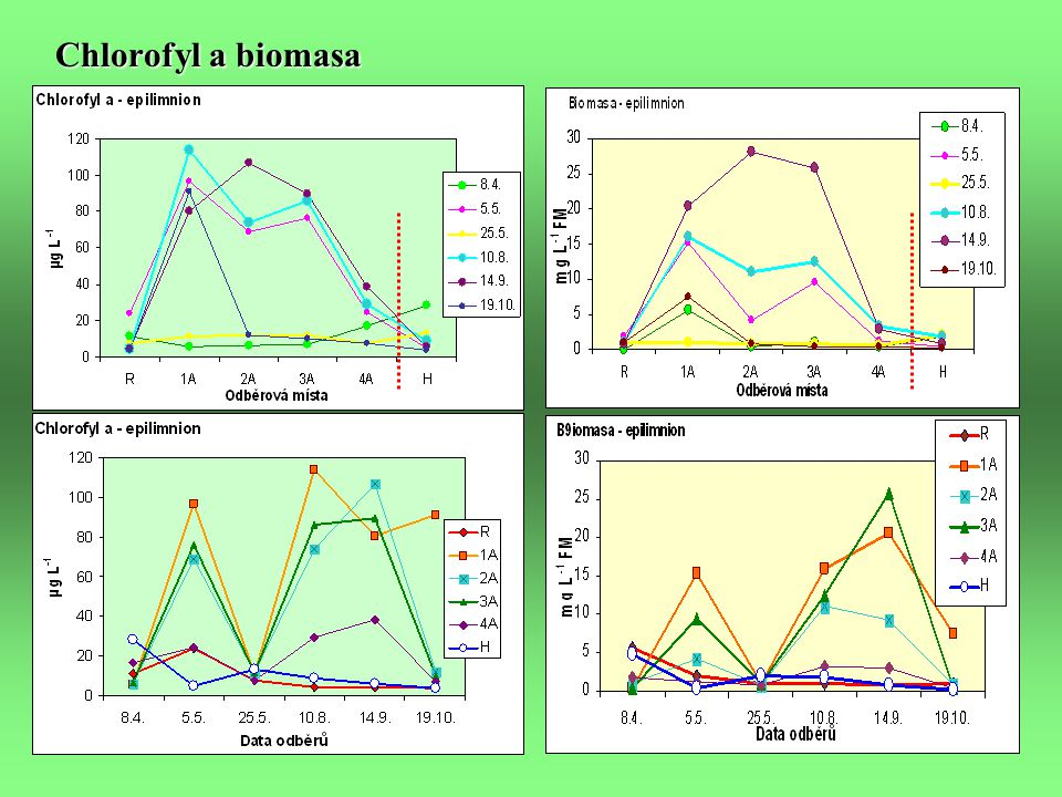 Gradienty hlavních faktorů, P tot, Si a fytoplankton