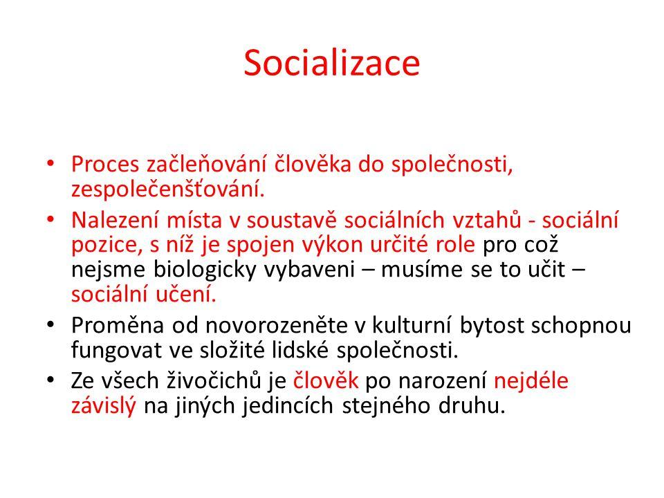 Socializace Proces začleňování člověka do společnosti, zespolečenšťování. Nalezení místa v soustavě sociálních vztahů - sociální pozice, s níž je spoj