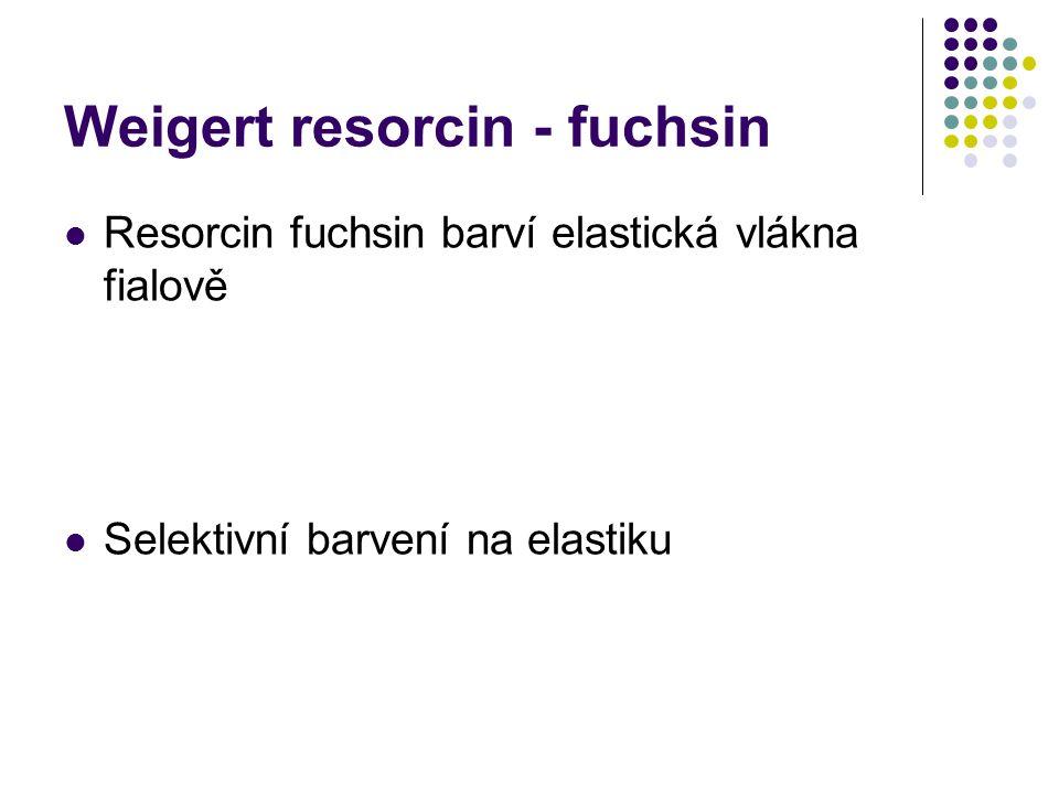 Weigert resorcin - fuchsin Resorcin fuchsin barví elastická vlákna fialově Selektivní barvení na elastiku