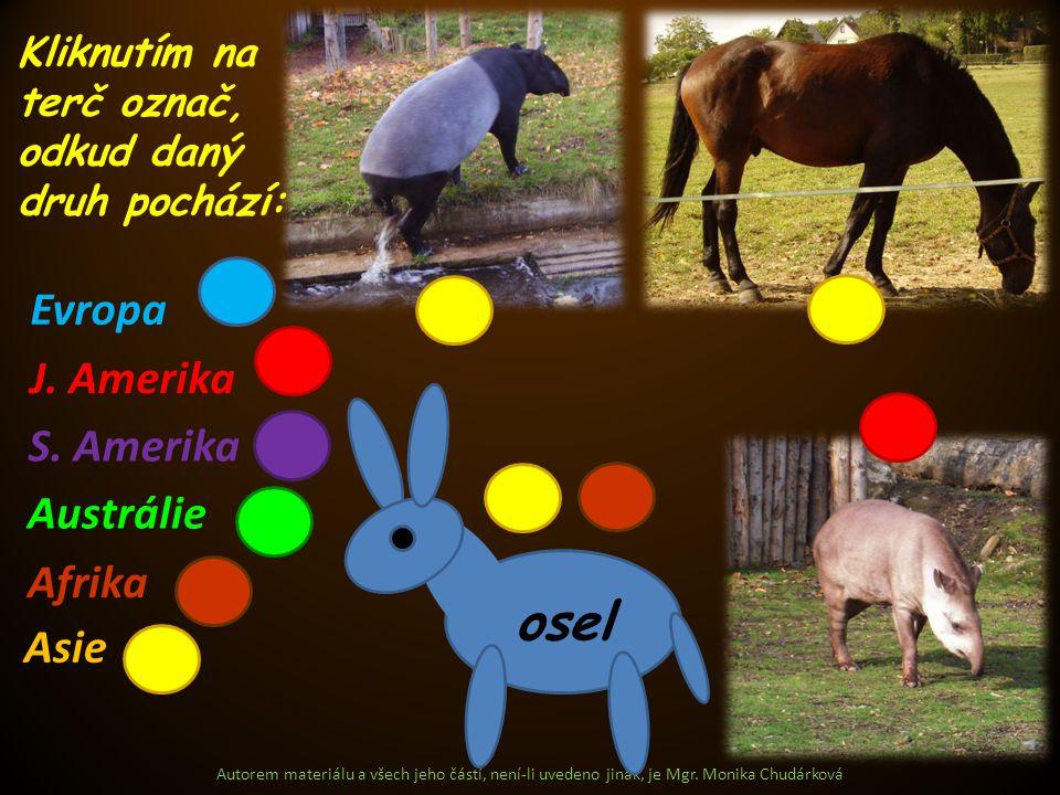 Evropa Asie J. Amerika S. Amerika Austrálie Afrika Kliknutím na terč označ, odkud daný druh pochází: osel