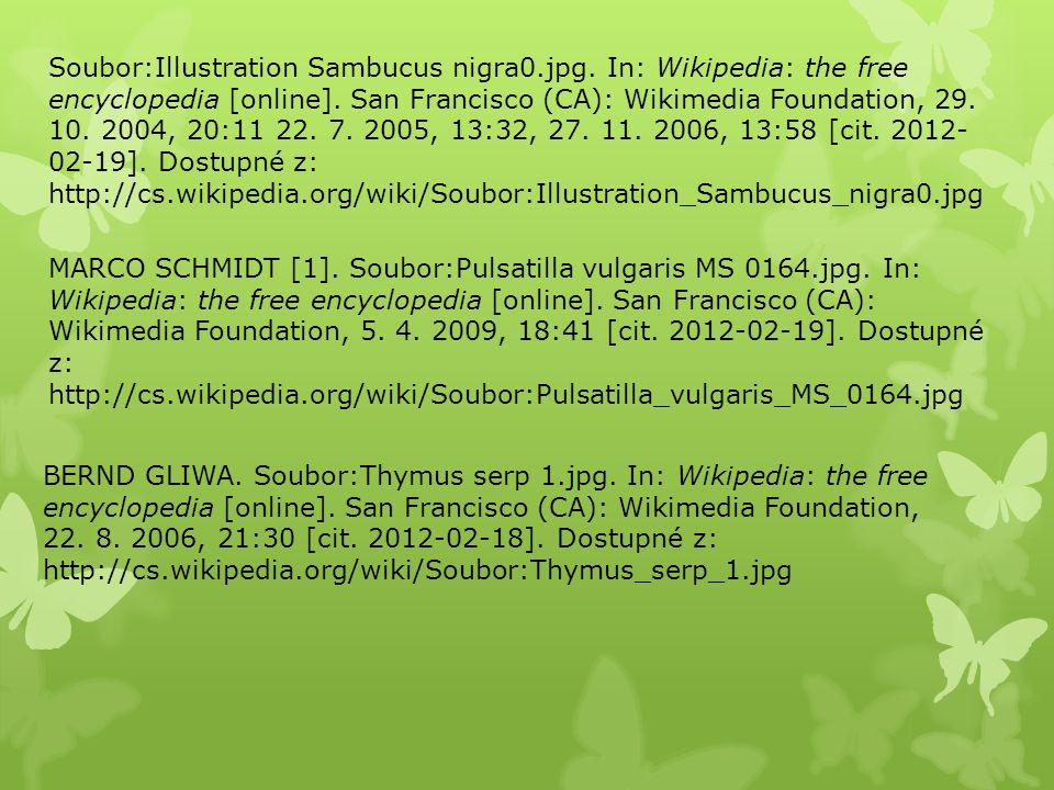 Soubor:Illustration Sambucus nigra0.jpg. In: Wikipedia: the free encyclopedia [online]. San Francisco (CA): Wikimedia Foundation, 29. 10. 2004, 20:11