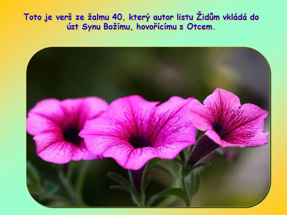 Toto je verš ze žalmu 40, který autor listu Židům vkládá do úst Synu Božímu, hovořícímu s Otcem.