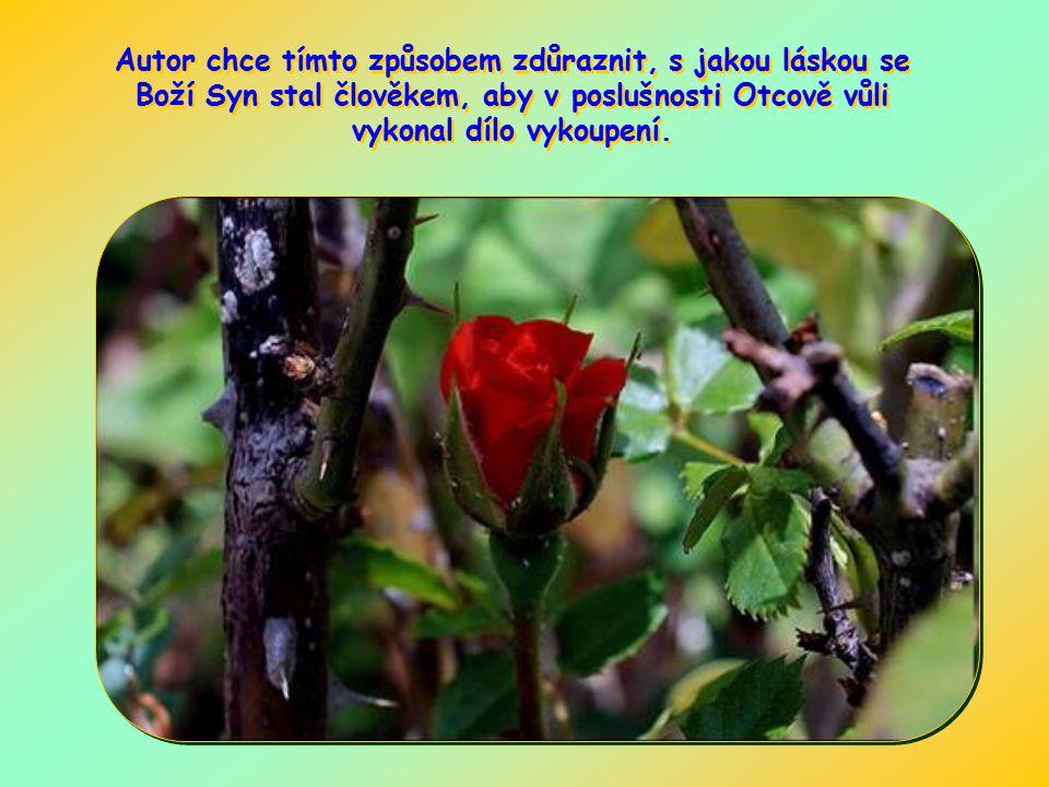 Autor chce tímto způsobem zdůraznit, s jakou láskou se Boží Syn stal člověkem, aby v poslušnosti Otcově vůli vykonal dílo vykoupení.