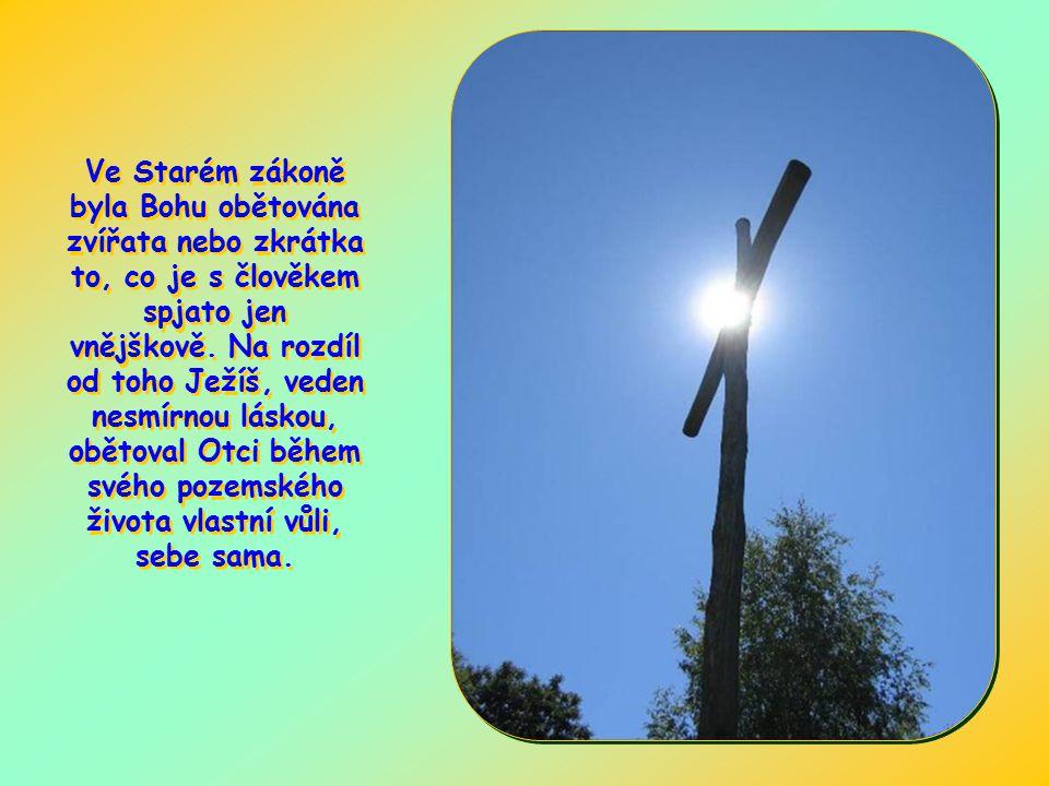 Tato slova jsou vyřčena v kontextu, v němž chce autor ukázat nekonečnou nadřazenost Ježíšovy oběti vzhledem k obětem Starého zákona.