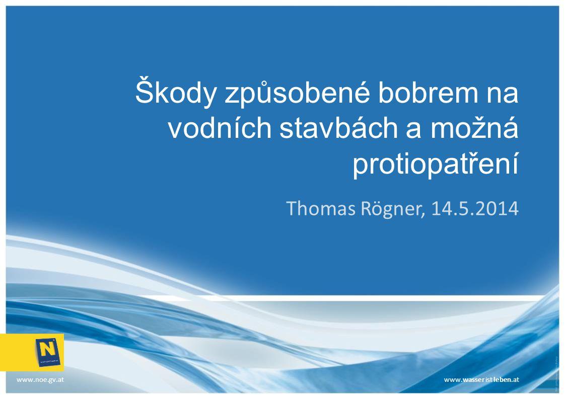 www.wasser ist leben.at Přehled Weinviertel – malé potoky, plošné regulace Vyšší náklady na údržbu Bobři a drenáže Rámcová směrnice EU o vodě – břehové porosty Bobři v retenčních nádržích Vinylové štětovnice k zajištění protipovodňových hrází