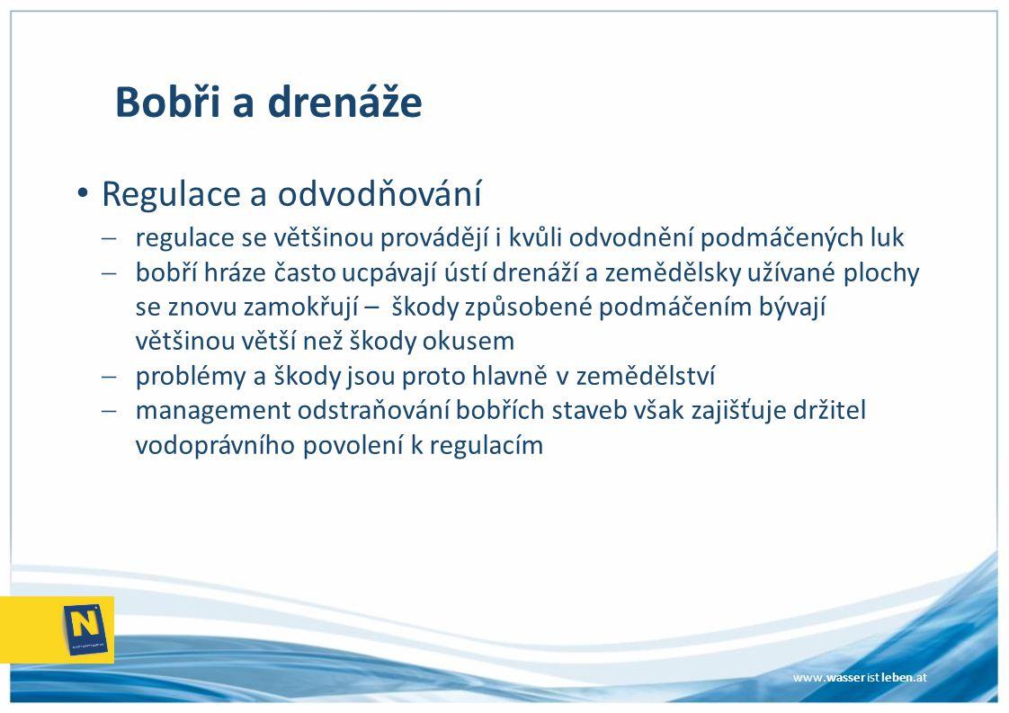 www.wasser ist leben.at Bobři a drenáže Regulace a odvodňování  regulace se většinou provádějí i kvůli odvodnění podmáčených luk  bobří hráze často