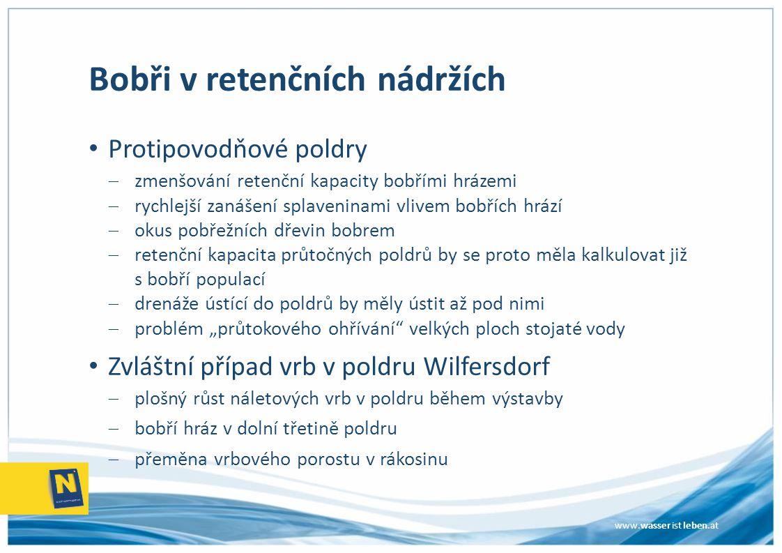 www.wasser ist leben.at Bobři v retenčních nádržích Protipovodňové poldry  zmenšování retenční kapacity bobřími hrázemi  rychlejší zanášení splaveni