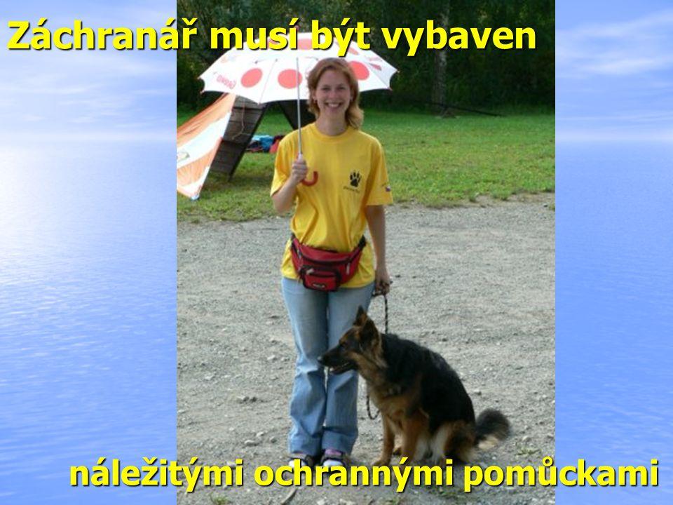 OBALOVNA 2008 OHLÉDNUTÍ