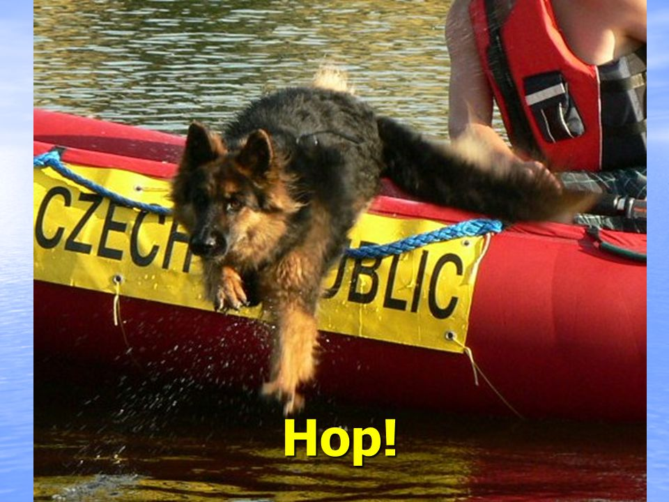 Před skokem do vody nutno býti upraven