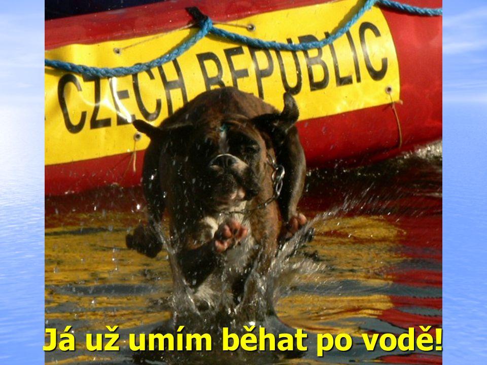 Já už umím běhat po vodě!