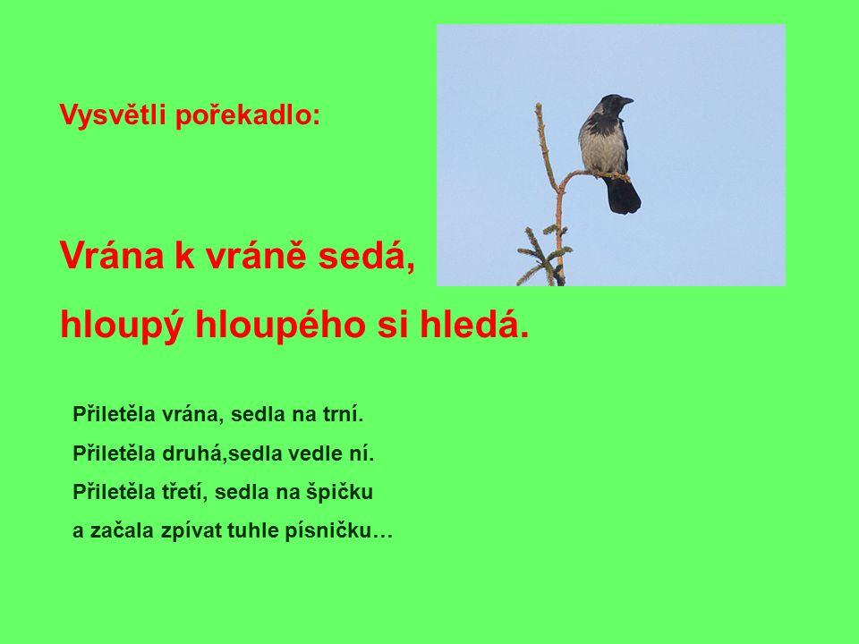 Vysvětli pořekadlo: Vrána k vráně sedá, hloupý hloupého si hledá. Přiletěla vrána, sedla na trní. Přiletěla druhá,sedla vedle ní. Přiletěla třetí, sed